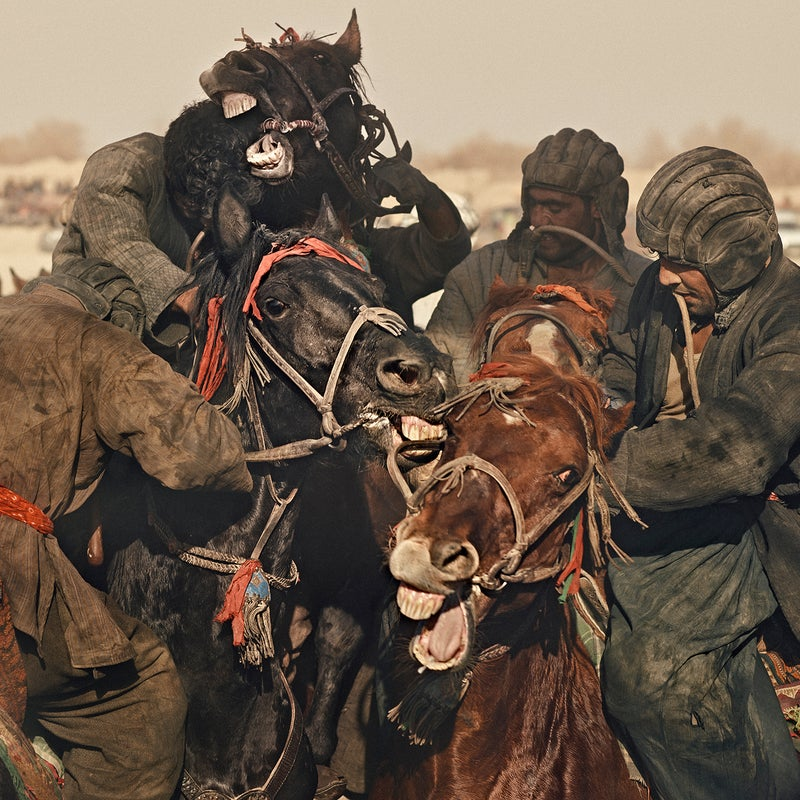Riders fighting for control of the buz, a slaughtered calf.