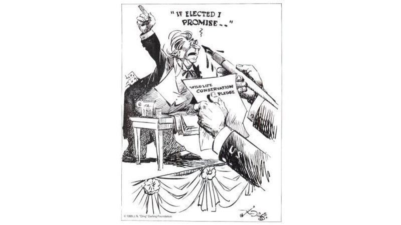 It sounds quaint today, but in the 1930s, a cartoonist was able to hold politicians accountable for failing to follow through on their promises to protect wildlife. Dingle criticized roundly, but FDR was a frequent subject.