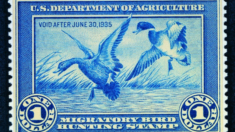 Ding Darling's first ever federal duck stamp.