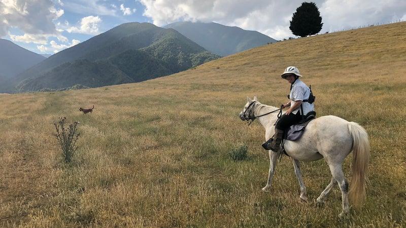 Horseback riding at Honeywell Hut.