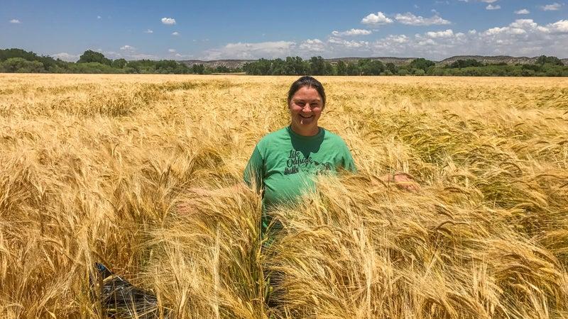 Kim Schonek in Hauser & Hauser Farms barley field.