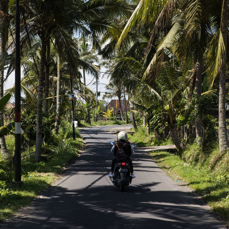 A Bali back road.