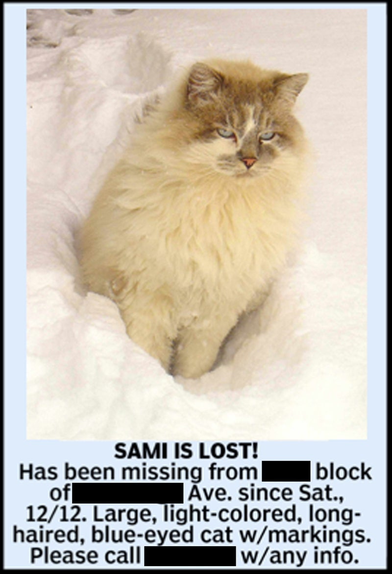 A newspaper ad seeking leads on Sami's whereabouts.
