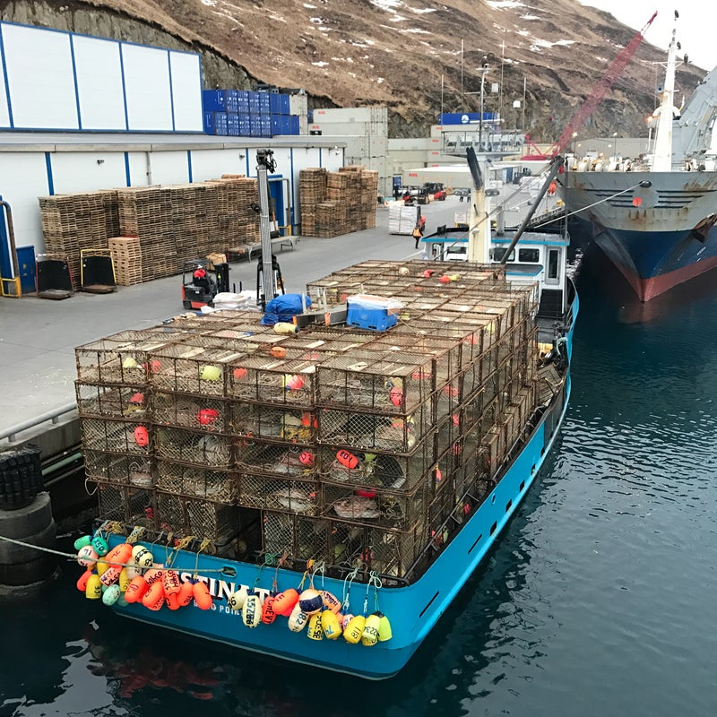 Image of the FV Destination in Dutch Harbor at the Kloosterboer cold-storage facility, Feburary 9th, 2017.