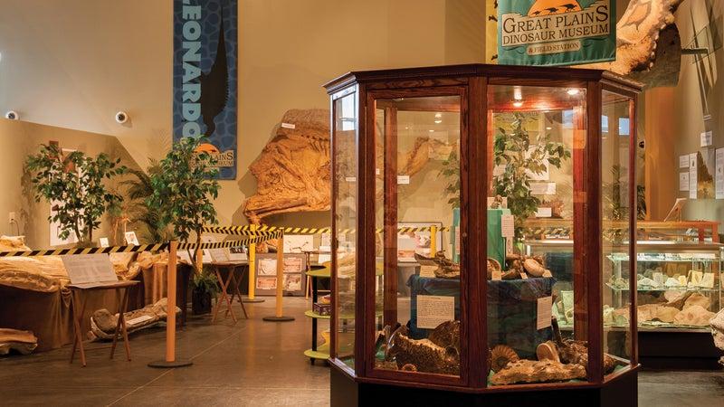 The Great Plains Dinosaur Museum in Malta.