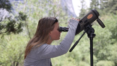 Biologist Crystal Barnes scanning a cliff in Yosemite for peregrines.
