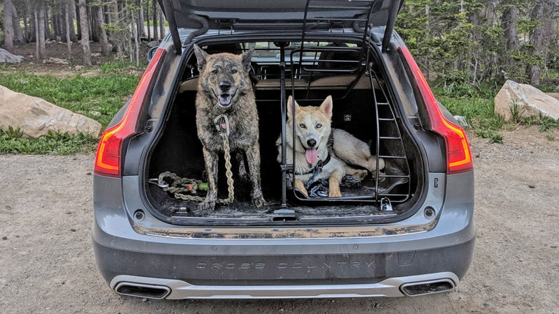 The dog containment system in this 2018 Volvo V90 Cross Country attaches to the vehicle's frame, so it's as strong as possible. Because it closely follows the contours of the load area and tailgate, it maximizes the space available to the dogs. Wiley knows to wait until he's told it's OK to jump out, but Bowie's just a year old and benefits from the added security of the lockable gate. The divider means one dog can be carried comfortably next to luggage without risk of it shifting onto the dog. It also allows both dogs to remain comfortable and secure, even while the vehicle tackles high-speed corners or bumpy off-road terrain.