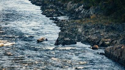 Tough going upstream