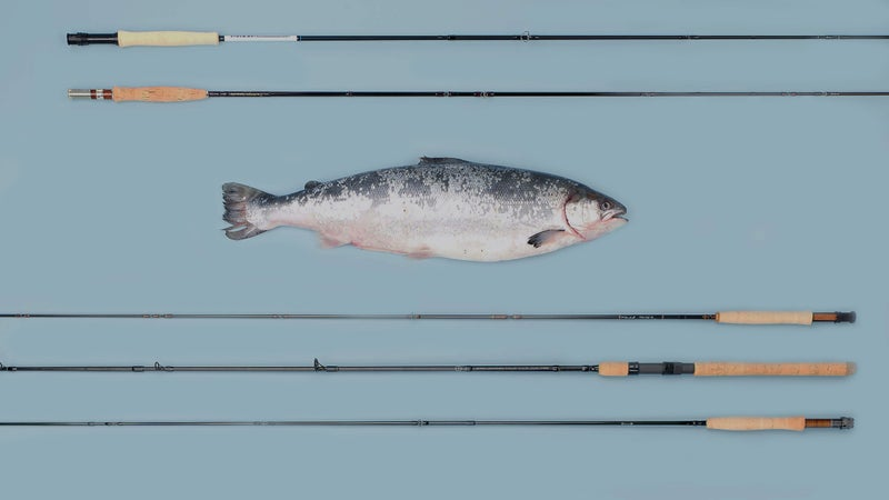 (From top to bottom) Orvis Helios 3D, Tom Morgan Rodsmiths Graphite, Scott G Series, Shimano Clarus, G. Loomis Asquith.