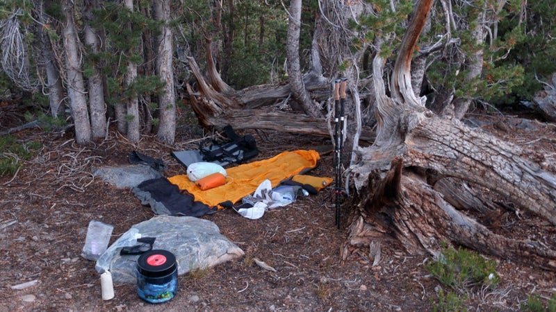 A typical camp: cowboy camping (no shelter), tucked in among trees for wind protection and thermal cover. I carried a mid tarp and didn't set it up once.