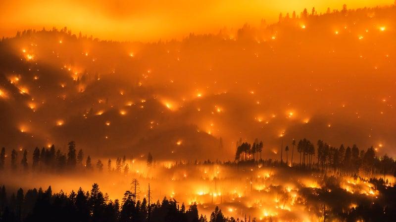 The El Portal Fire.