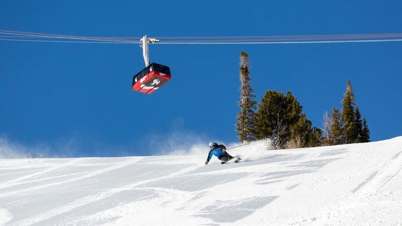 skier mountain