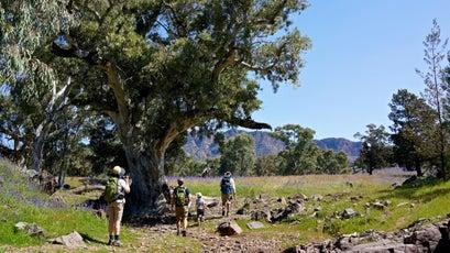 Flinders Ranges