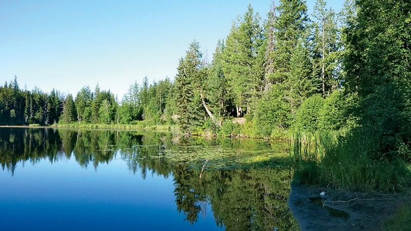Hogsback Lake, where Scott went missing