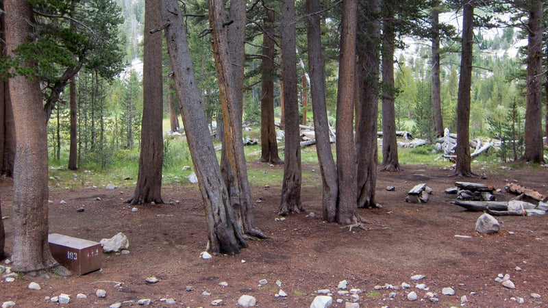 A permanent bear box (lower left) at a high-use campsite on the John Muir Trail