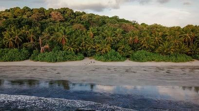 Colba National Park, Panama.