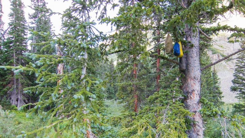 Near tree line on the Aspen Four Pass Loop, it's just about impossible to hang food properly in the spindly and stunted spruces and firs. As a result, subpar hangs abound.