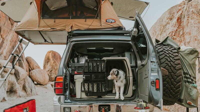 These things aren't small, and aren't easy to pack. But making room for one will make your dog's life much more comfortable, and substantially safer.