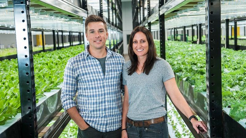 Urban Organics cofounders Dave and Kristen Haider