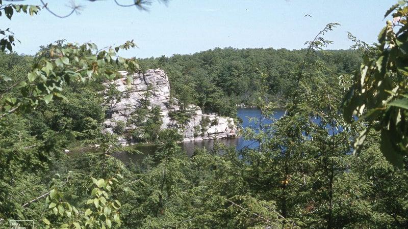 Ell Pond. Woodland of Oak / Pitch Pine. South West Rhode Island