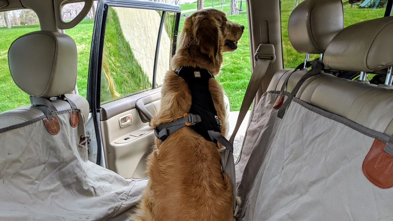 The Load-Up is pretty simple to use. Just feed the seat belt through the Attach loop on the back, and buckle it into place.