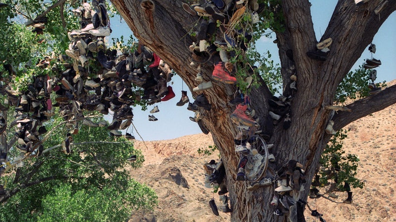 The shoe tree remains an elusive but iconic emblem of the West. We're not going to tell you how to find it.