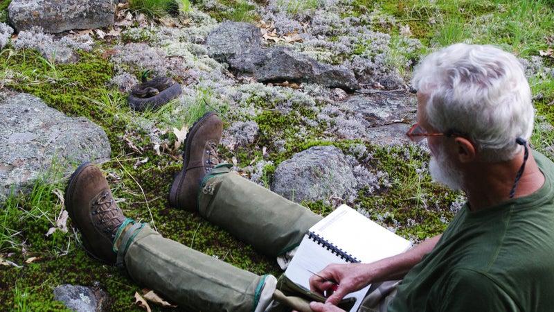 Brown relaxing near a rattlesnake