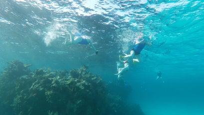 Exploring a reef in the Abacos
