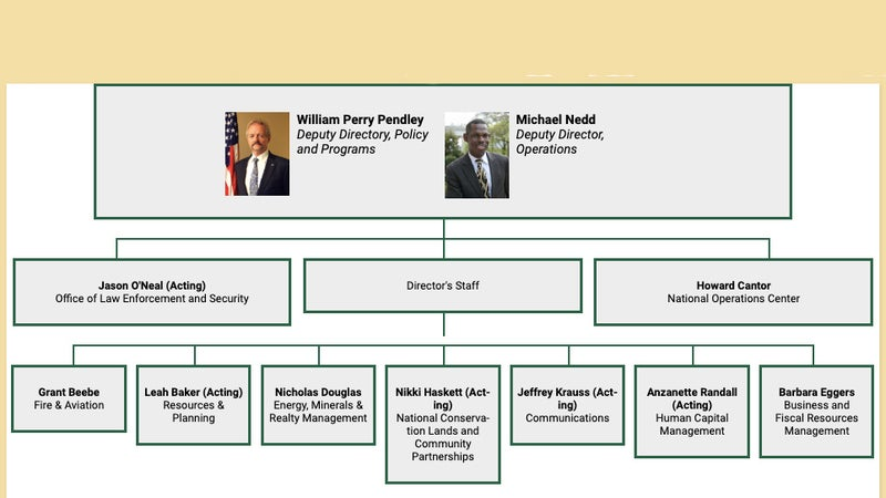 The BLM updated its org chart with Pendley at its top, but issued no announcement on the subject and is not responding to any press inquiries.