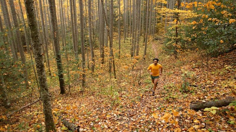 Man running under fall foliage