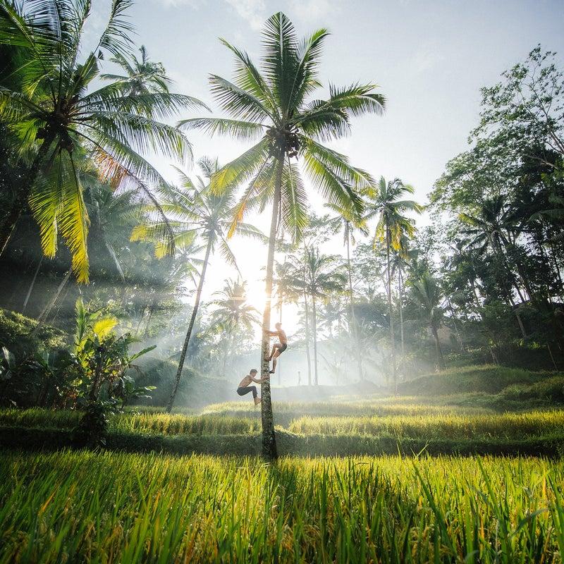 Location: Bali, Indonesia | Camera: OM-D E-M1X | Lens: M.Zuiko Digital ED 7-14mm F2.8 PRO | Settings: ISO 400, 7mm, f5.6, 1/4000 sec