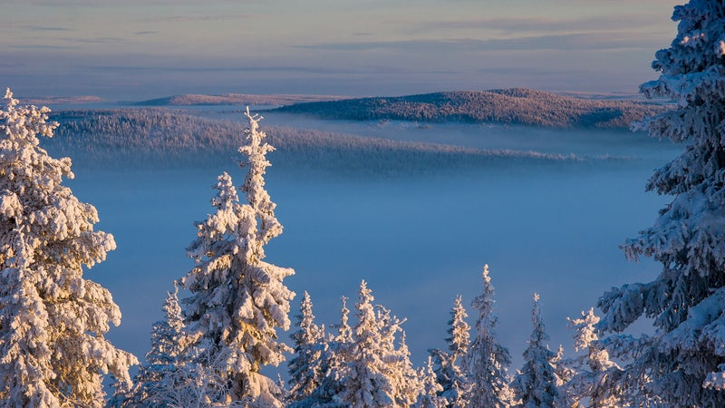 The Finnish countryside