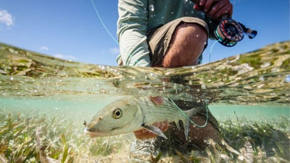 Bonefish at Garbutt's Fishing Lodge