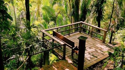Copal Tree Lodge