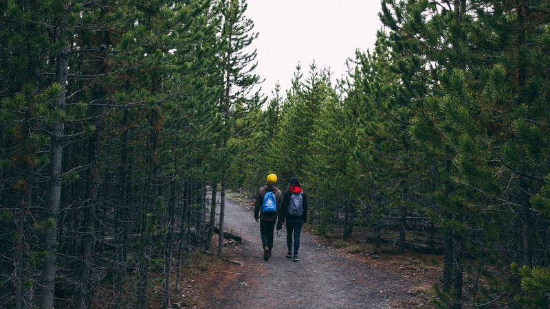 Hikers in Yellowstone, in pre-pandemic times