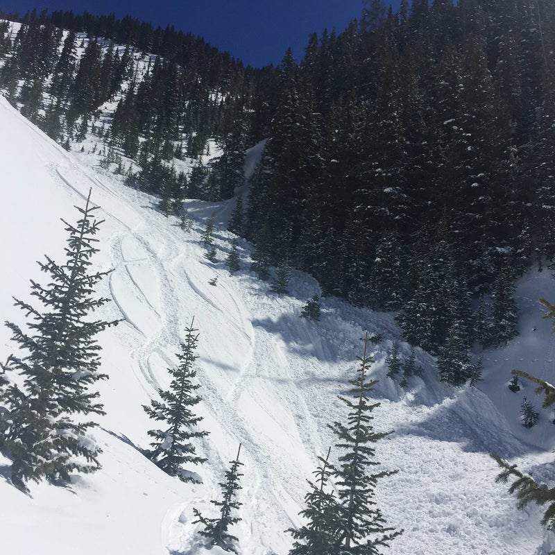 A snowboarder was seriously injured in an avalanche in East Waterfall Canyon near the town of Ophir on March 24.