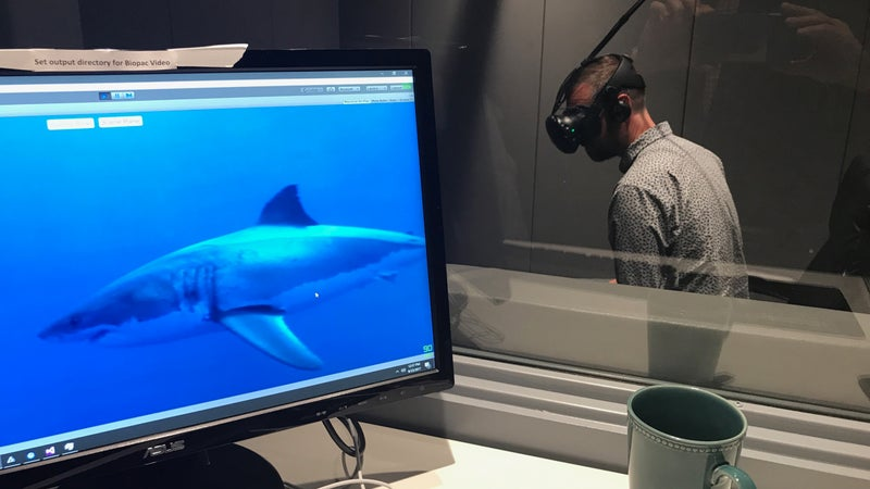 The author sampling virtual fear at the Stanford lab of neuroscientist Andrew Huberman