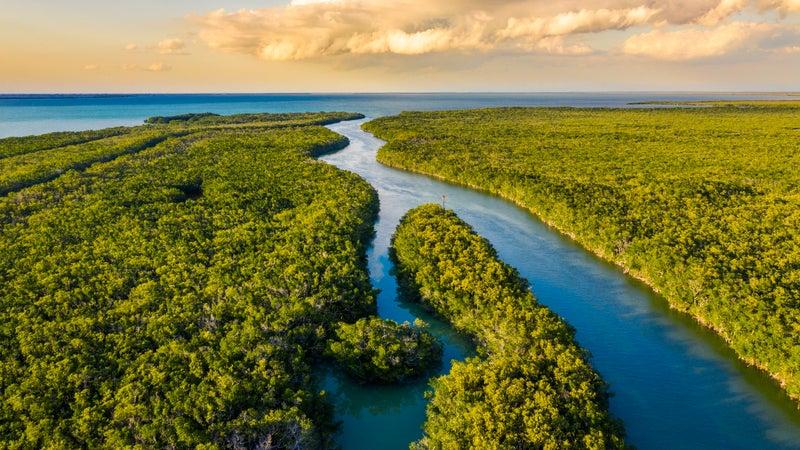 Everglades National Park at sunset, Florida, USA