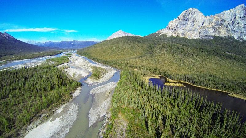 Sukakpak Mountain and the Koyukuk River in Summer