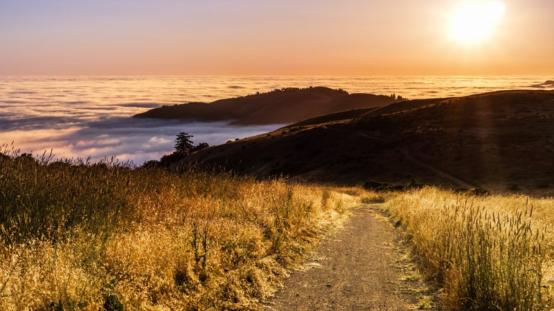 Sunset view of hiking trail in the Santa Cruz mountains; valley covered by a sea of clouds visible in the background; San Francisco bay area, California