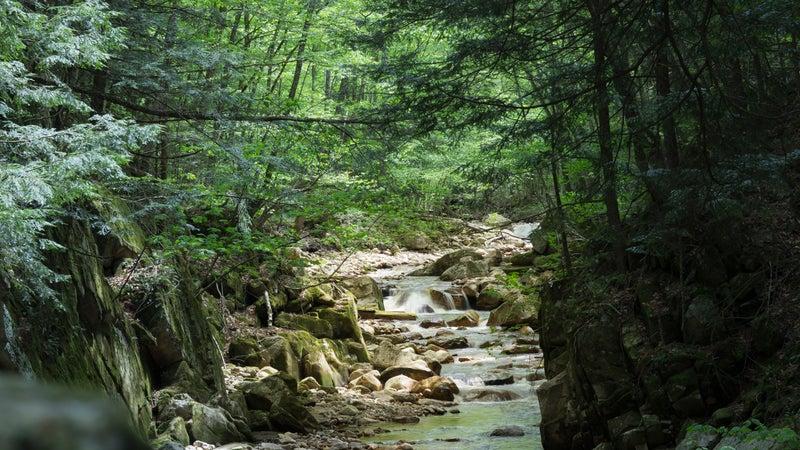 Scenic Landscape, Lye Brook, Vermont