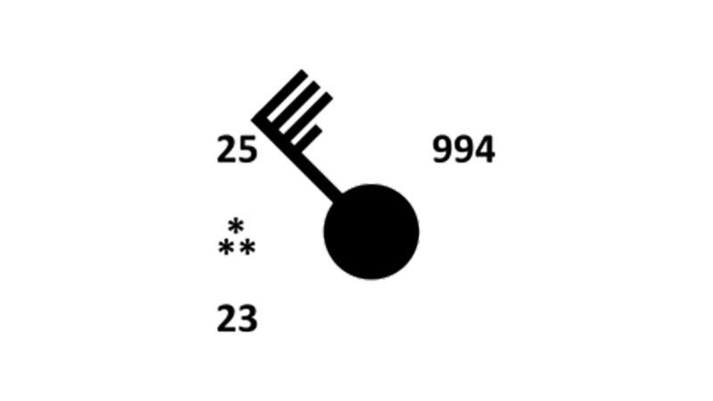 A station plot