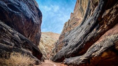 Grand Wash canyon stream