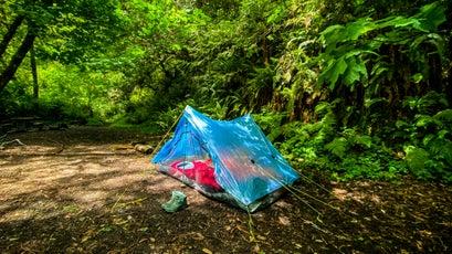 A site at Elam Camp