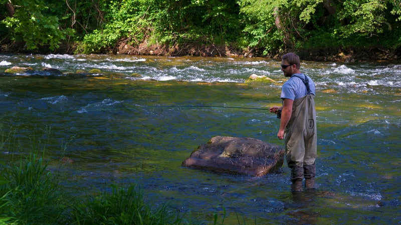 Fisherman Fishing Watauga River in Tennessee