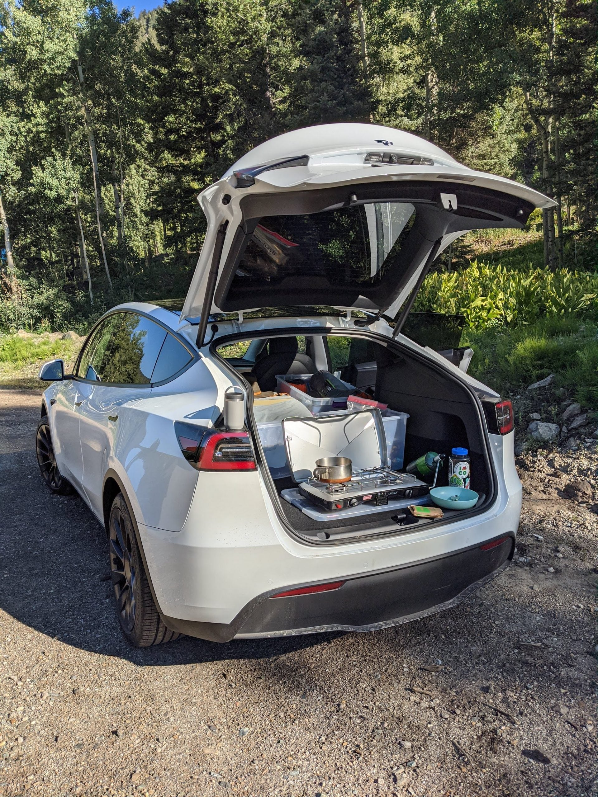 Cooking in the Tesla