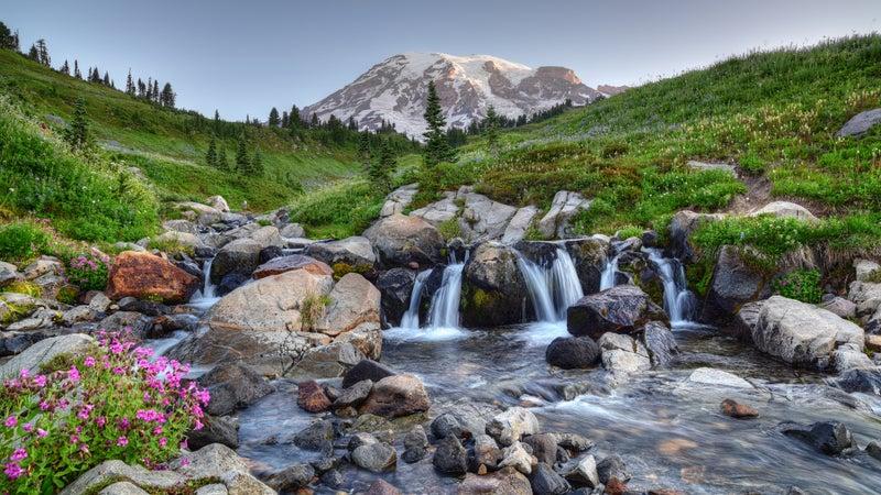 Mount Rainier Summer