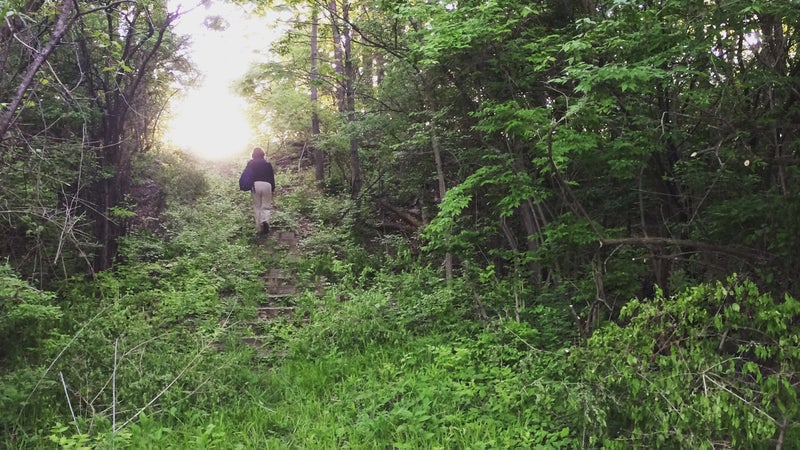 The stairs to the campsite before Scout Hollow was cleaned up