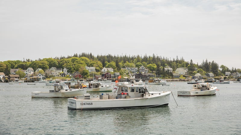 A fishing town in Maine's Down East region, about an hour north of Bar Harbor