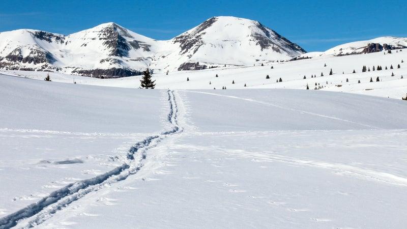 Nordic ski track through snow to peaks